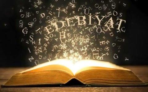 edebiyat-dersi-ozel